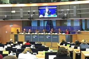 Europese commissie Afet in Brussel